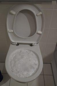toilettes bouchées plombier-chauffagistes.fr vous dit comment déboucher des toilettes